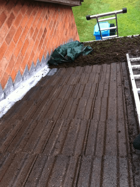 Cannock Roof Cleaning / Moss Removal Service