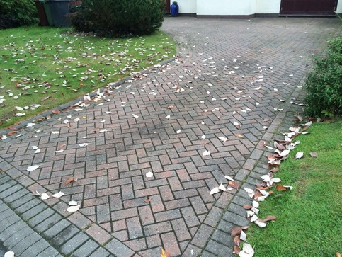 driveway cleaning in albrighton