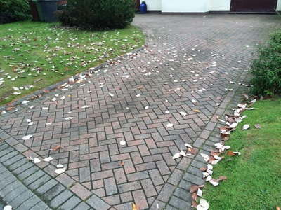 Driveway Cleaning in Compton